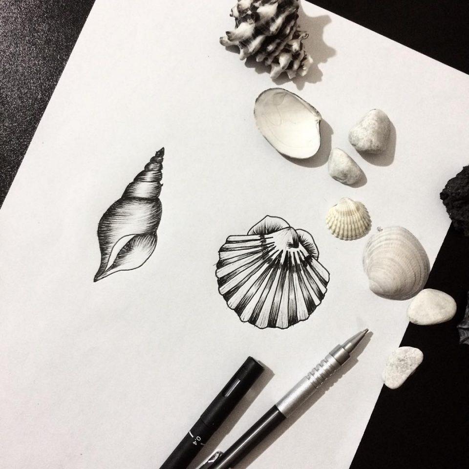 deniz kabugu dövme modeli
