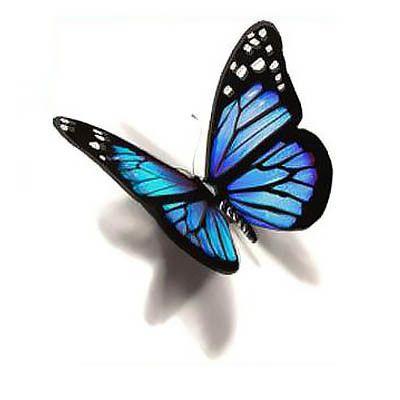 3D kelebek dövme modeli