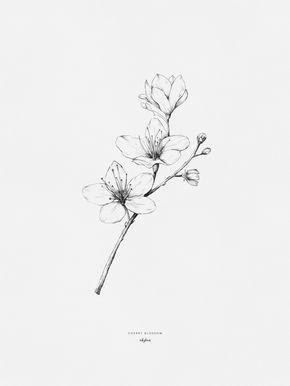 sakura çiçek dövme modeli